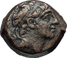 ANTICHOS IX Kyzikenos Authentic Ancient Seleukid Greek Coin Thunderbolt i67384