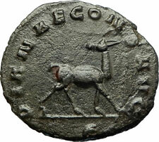 GALLIENUS Genuine 267AD Rome Authentic Ancient Roman Coin w ANTELOPE i77187
