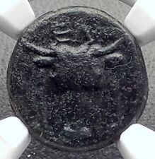 ELATEIA in PHOKIS Authentic Ancient 200BC Greek Coin BULL & ATHENA NGC i72651