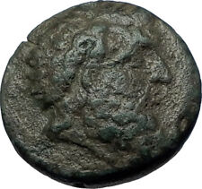 SEUTHES III Odrysian THRACE King 324BC HORSE Authentic Ancient Greek Coin i68118