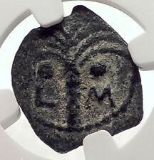 MARCUS AMBIBULUS Augustus Jerusalem Ancient 9AD BIBLICAL Roman Coin NGC i70988