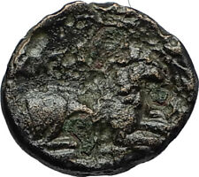 KASSANDER 316BC Pella Macedonia HERCULES LION Original Ancient Greek Coin i66700