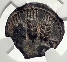 Herod AGRIPPA I JERUSALEM Biblical Claudius Time Ancient Greek Coin NGC i70871