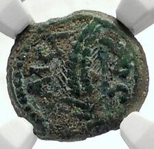 MARCUS AMBIBULUS Augustus Jerusalem Ancient 8AD BIBLICAL Roman Coin NGC i70970