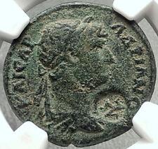 HADRIAN Authentic Ancient Selge Pisidia Roman Coin w STYRAX Plants NGC i68450