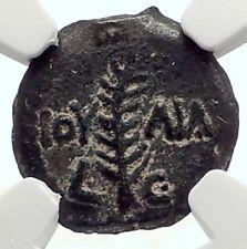 VALERIUS GRATUS Roman Jerusalem Prefect TIBERIUS LIVIA Biblical Coin NGC i70915