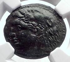 SYRACUSE in SICILY under PYRRHOS Hercules Athena Ancient Greek Coin NGC i72051