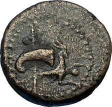 RHOEMETALKES I King of Thrace Ancien 11BC Greek Coin w CAPRICORN THRONE i66680