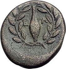 ELAIA in AEOLIS 350BC Authentic Ancient Greek Coin ATHENA Grain Wreath i62743