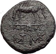 AMISOS in PONTUS MITHRADATES VI the GREAT Time Perseus Pegasus Greek Coin i60860