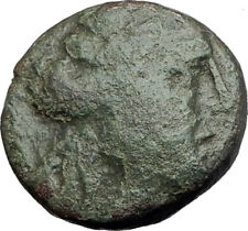 THESSALONICA Macedonia 148BC Authentic Ancient Greek Coin DIONYSUS & GOAT i63844