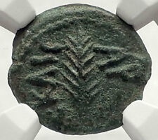 Biblical Jerusalem Saint Paul NERO PORCIUS FESTUS Ancient Roman Coin NGC i70853