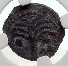 MARCUS AMBIBULUS Augustus Jerusalem Ancient 8AD BIBLICAL Roman Coin NGC i70931