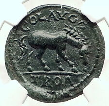 VOLUSIAN Authentic Ancient 251AD Roman Coin ALEXANDER TROAS Horse NGC i72840