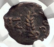 MARCUS AMBIBULUS Augustus Jerusalem Ancient 10AD BIBLICAL Roman Coin NGC i70912