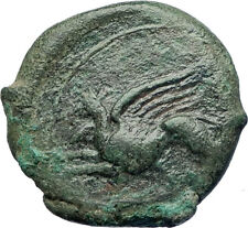 KAINON Alaisa in SICILY 360BC Authentic Ancient Greek Coin GRIFFIN HORSE i74143