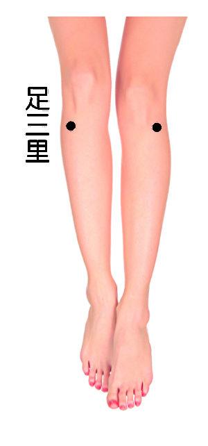 足三里位于小腿上,当腿弯曲时,可以看到在膝关节外侧有一块高出皮肤的小骨头,这就是外膝眼,从外膝眼直下四横指处便是足三里。(fotolia)