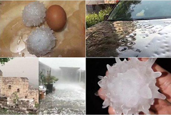 京冀兩省現異常天氣 雞蛋大冰雹砸毀農作物
