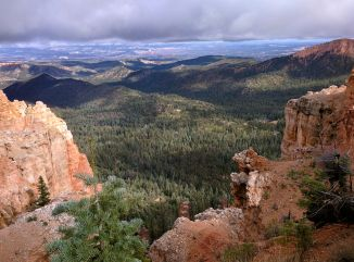Ponderosa Canyon Overlook