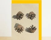 Pine cone forest print, A...