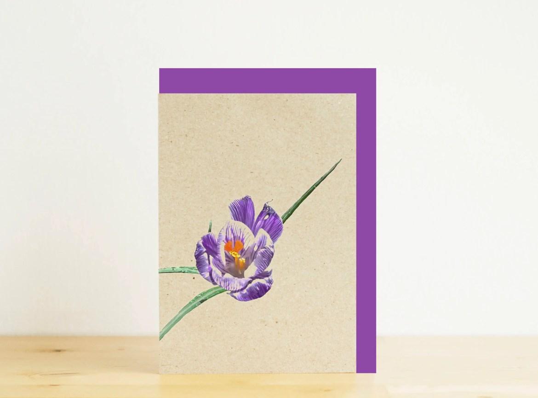 Purple crocus mini card, ...