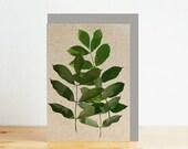 Ash leaves greeting card,...