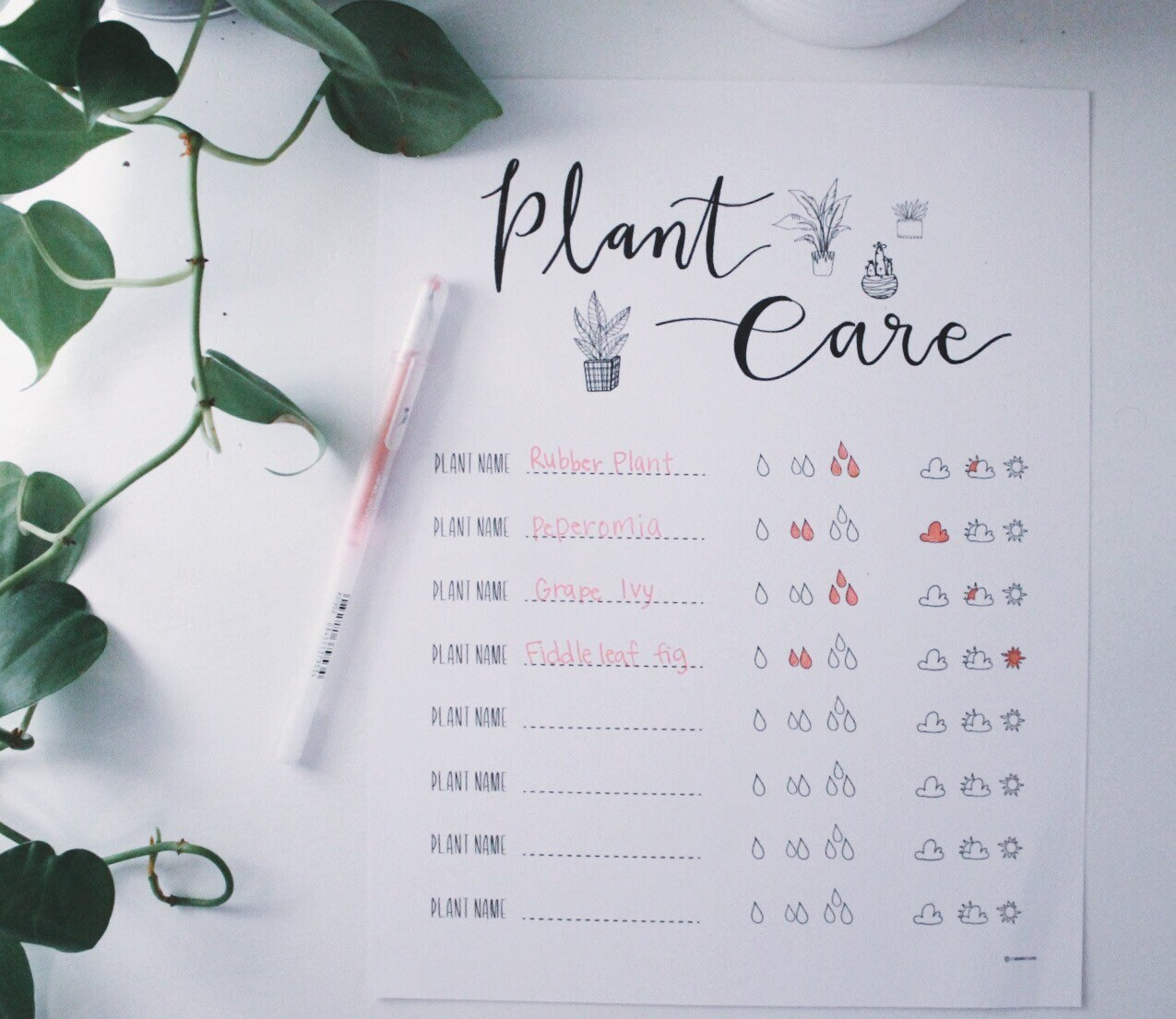 Plant Care Worksheet Plant Care Tracker Plant Lover