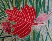 8 x 10 Maple Leaf On Lawn Print