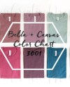 Bella Canvas Popular Heather Color Chart 3001 10 Folded Etsy