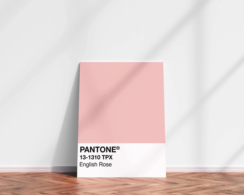 pantone english rose print pantone art pantone print pink pantone poster pantone wall art pink pantone art instant download