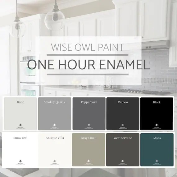 Image result for wise owl one hour enamel""