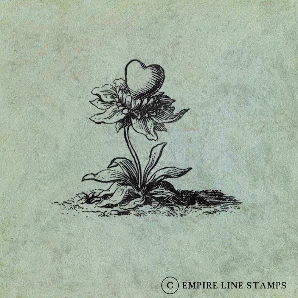 A flower with a Heart - A...