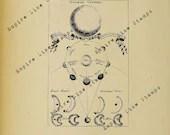 Planetary Orbits - Digita...