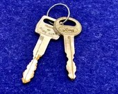 Vintage Ford Automotive Car Keys Ignition Key Door Lock Key Scrapbooking Jewelry Making Start Me Up Craft Supply