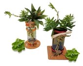Artificial Succulent Plant Bottle Vase   Plant Bottle Vase   Artificial Vase   Succulent Plant Vase   Home Décor   Bottle Vase   Vase