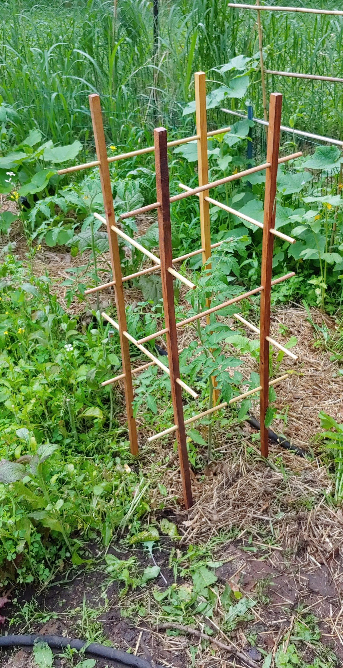 wood vegetable trellis from yardnbarn