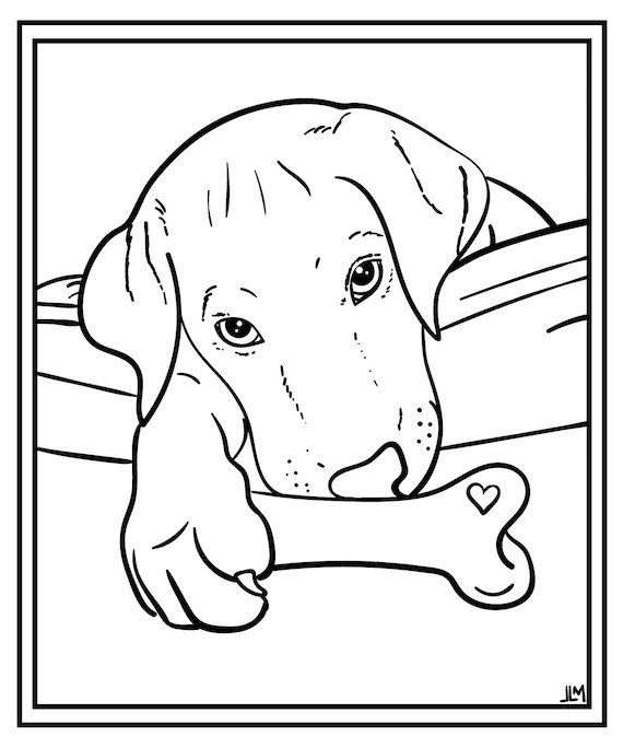 Custom Pet Coloring Page Dog Coloring Page Cat Colouring Etsy