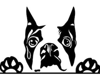 Download Boston terrier svg | Etsy