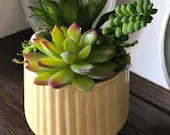 Artificial succulent arrangement in yellowish dish