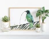 Giclée Art Print 'Visitor in Green' -A4 size coloured pencil drawing by Wild Portrait Artist, realistic starling painting colourful bird