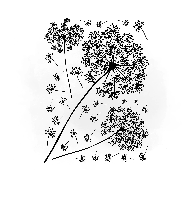 Dandelions Svg Clipart Dandelions Svg For Silhouette Svg