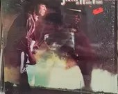 Stevie Ray Vaughan And Do...
