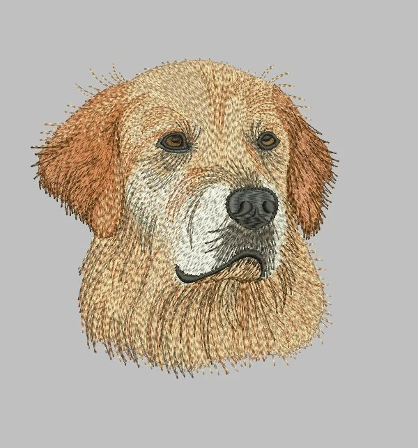 Golden Retriever Dog Gift Personalized Pet Gifts Dogs Etsy