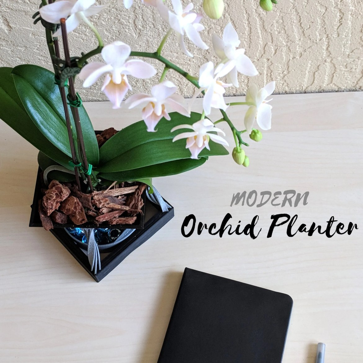 Small Modern Orchid Plant...
