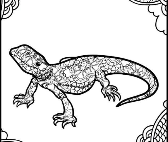 Printable Coloring Page Adult Coloring Page Animal Etsy