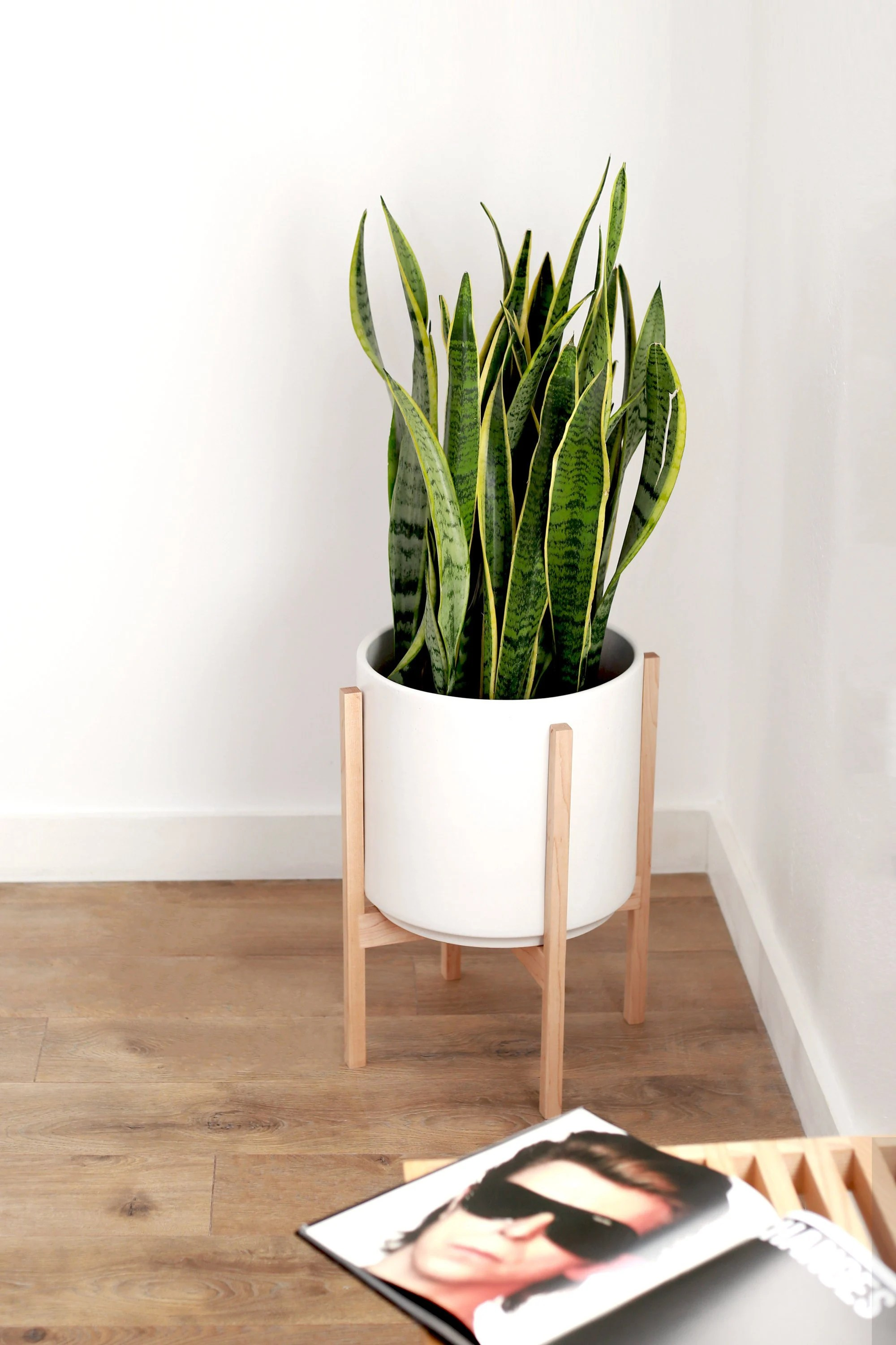 Large Mid Century Modern Indoor Planter With Hardwood Plant Stand 12 Ceramic Plant Pot Handmade Stand
