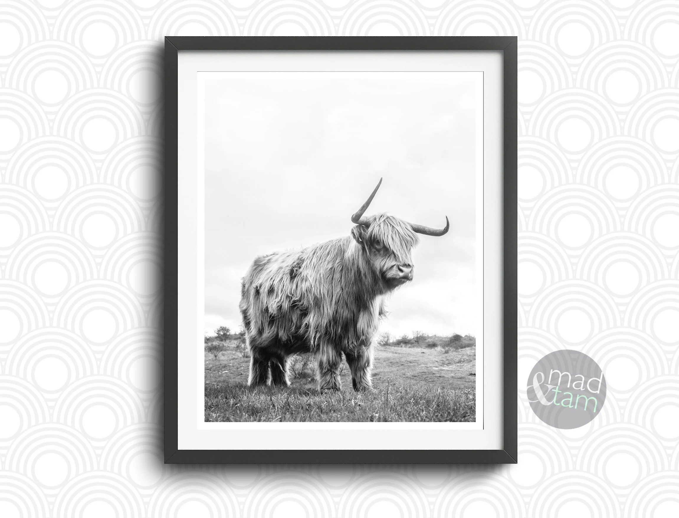 Highland Cow Print Farm Animal Wall Art Printable Art Cow