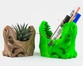 T-Rex Succulent Planter&P...