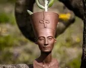 Nefertiti succulent head ...