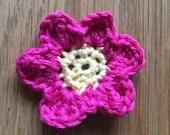 Crochet Pattern Pretty Pr...